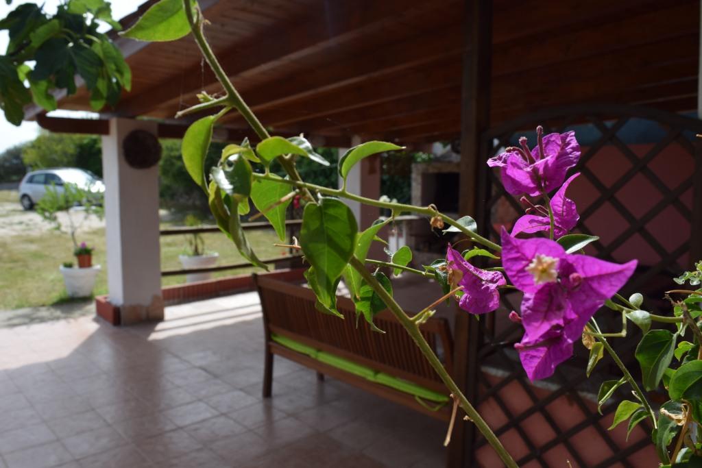 Casa Vacanze Nell'oliveto Frutteto Vista Mare