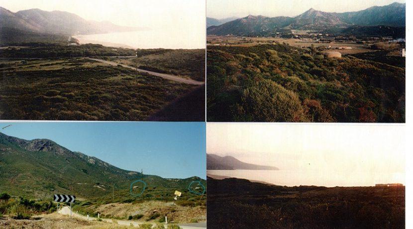 Collage - Copia