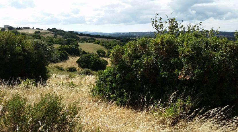 terreni capichera marchese patti 11