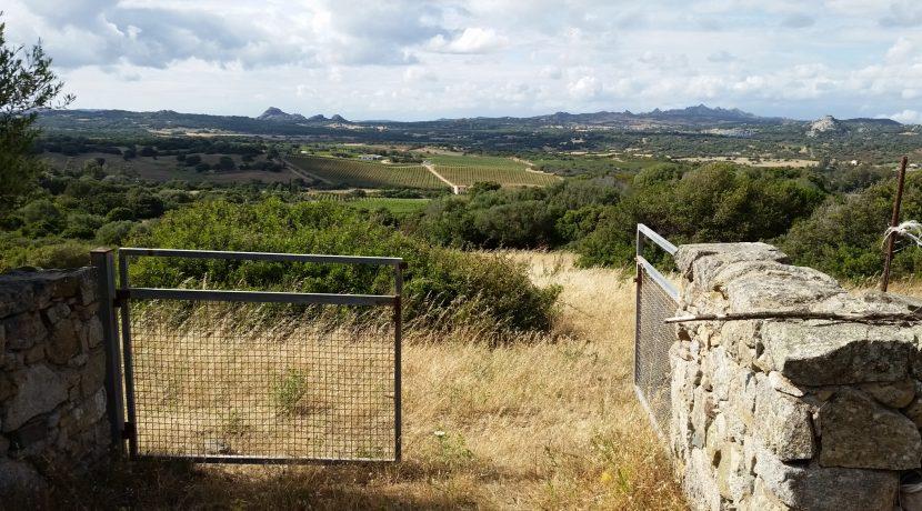 terreni capichera marchese patti 13