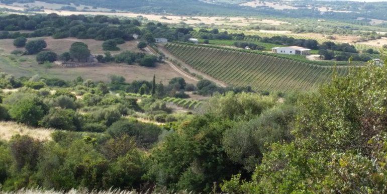 terreni capichera marchese patti 4