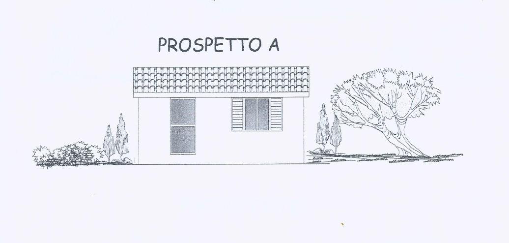 Oliveto con progetto approvato 4 km dal mare