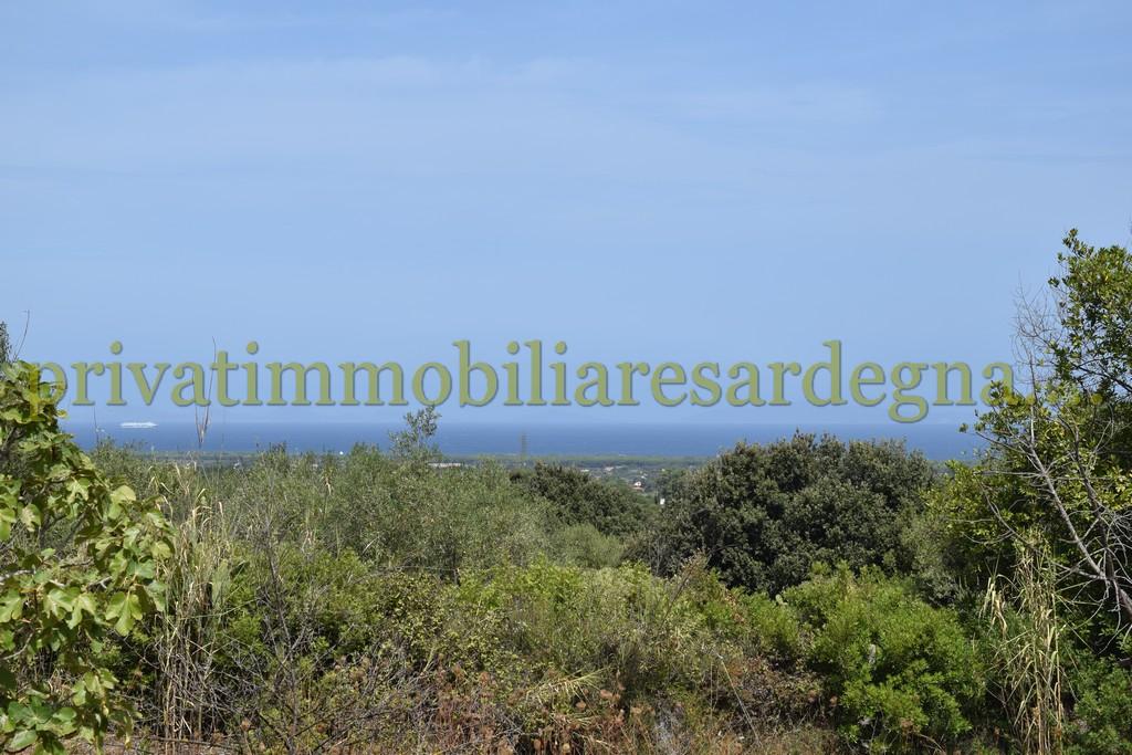 Casa civile abitazione piu' depandance vista mare nell'oliveto